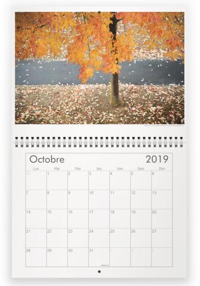 Calendrier milieuduciel arbres octobre2019