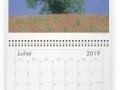 Calendrier milieuduciel arbres juillet 2019