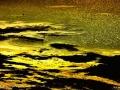 Le lac doré