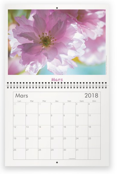 Milieuduciel calendrier fleurs 2018