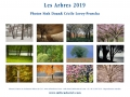 calendrier milieuduciel arbres 2019