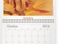 La couleur de l'instant - Calendrier Milieuduciel 2016